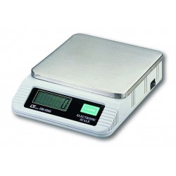 Lutron GM5000 Scale